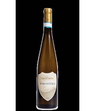 casa-d'ambra-forastera-vino-bianco-ischia